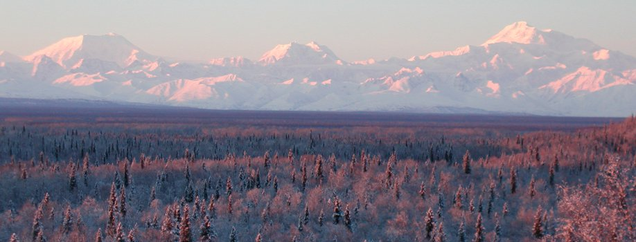 The Alaska Range in winter
